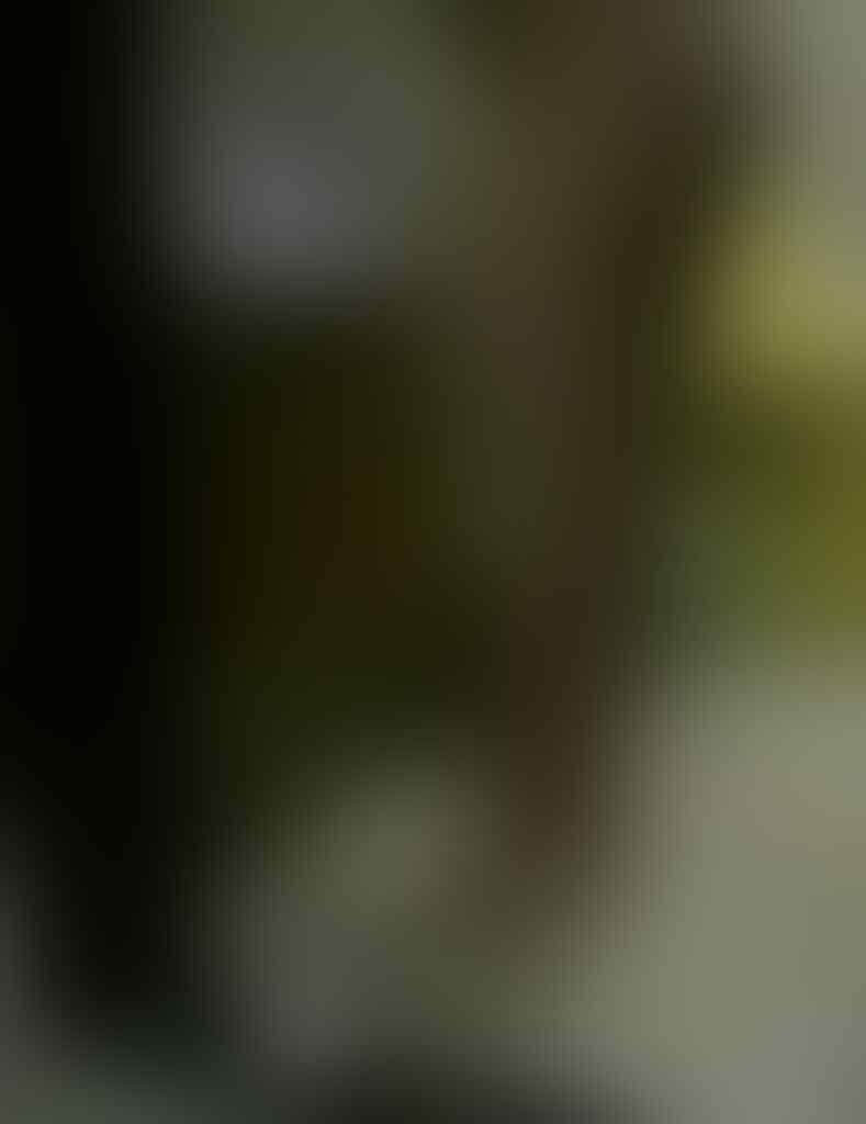 TERUNGKAP! inilah Rian Pengusaha Tajir Yang Bayar Vanessa Angel 80 JT