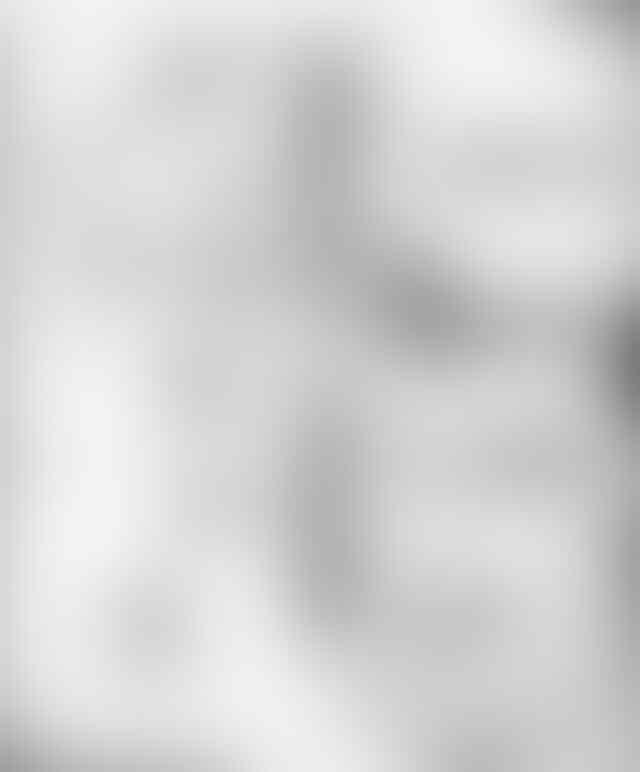 Black Clover | ブラッククローバー