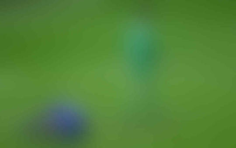°°° ● Spectre Soccer Room 2018/2019 ● °°° - Part 3