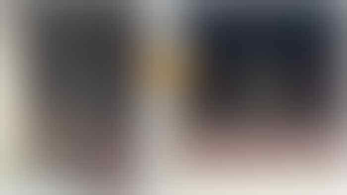 Viral Biawak Raksasa Manjat Pagar Rumah, Apakah Dia Mau Bertamu?