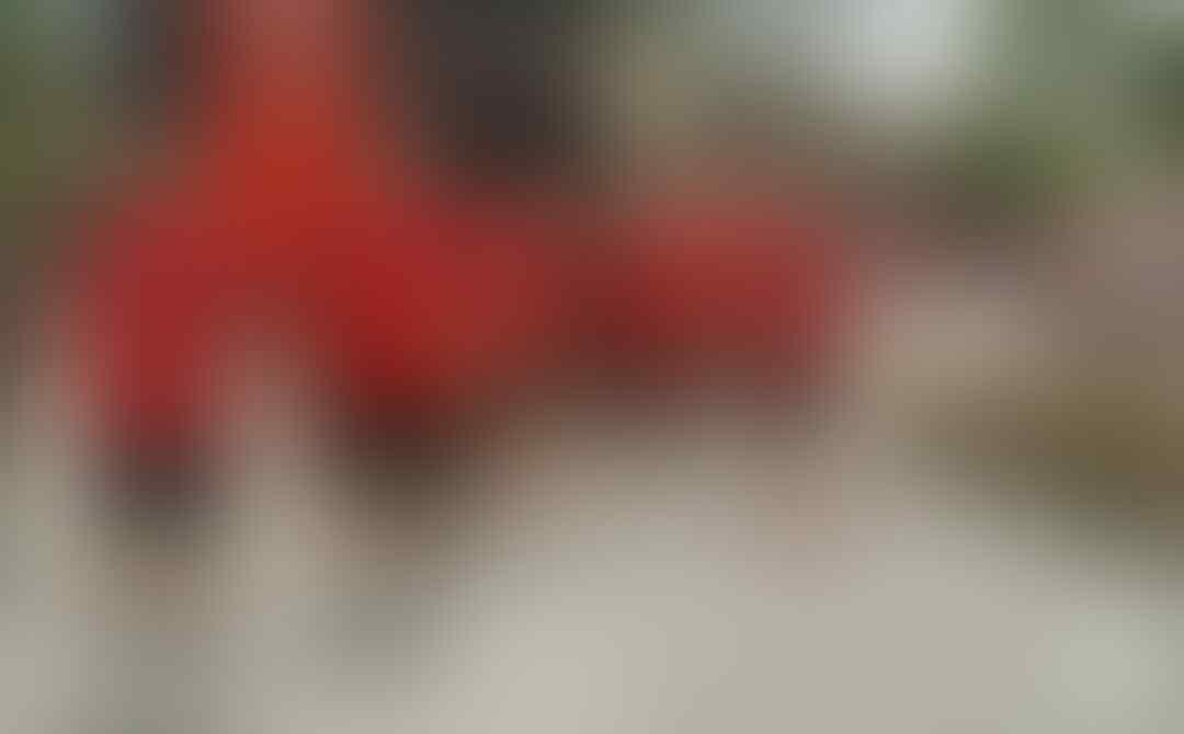 Curva Sud Milan -  A.C. Milan On Kaskus -  Stagione 2018/2019 - Part 3