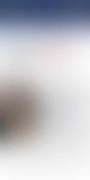 Waga DKI kecewa Dengan Program Daging Kurban Bintang 5 ala Anies