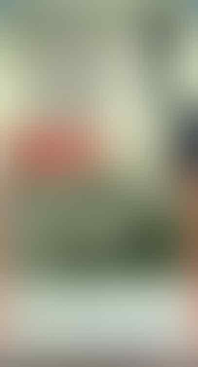 Jokowi : Jika ada yang ribut-ribut TKA Tiongkok masuk, dia emosi keagamaan