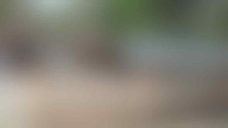 Memburu 'Ninja Cabul' yang Meneror Peraduan Perempuan di Purworejo
