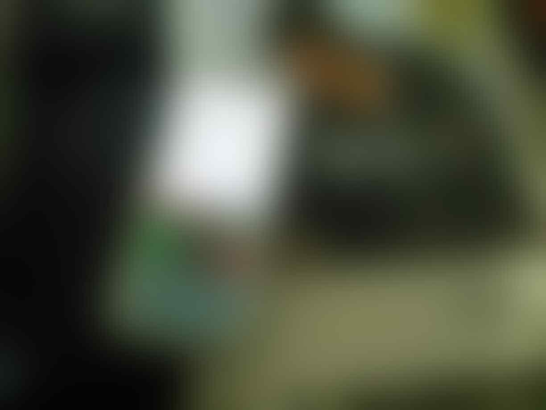Siuman! Inilah Yang Terjadi Pada Handphone Jadul Ane.