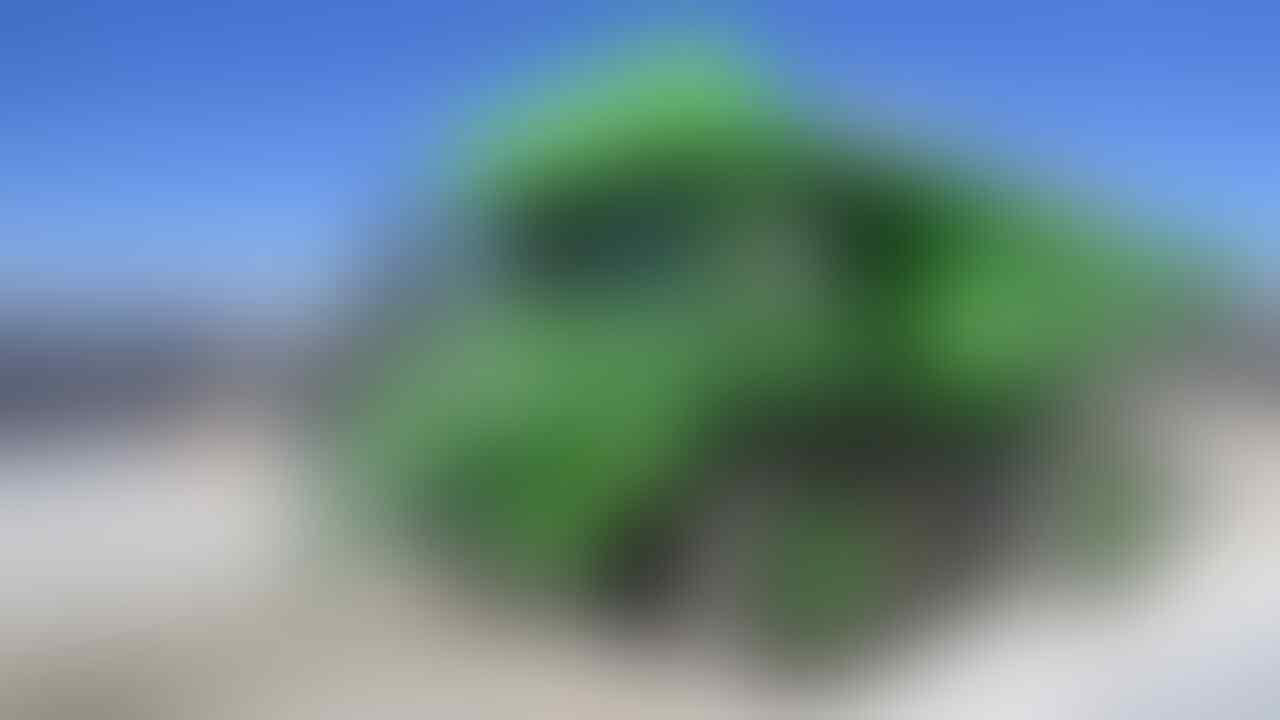 Gokil! Teknologi Kendaraan Listrik Udah Nyampe ke Kendaraan Tambang Gan