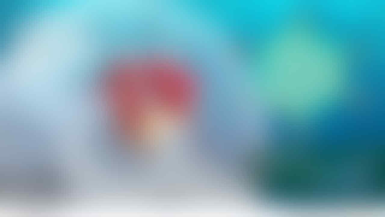 Complete Pokedex Shiny Pokemon - Pokemon Let's Go Nintendo Switch