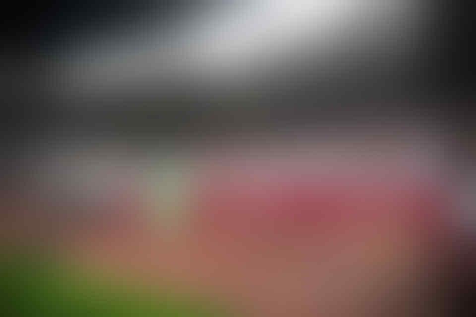 Indonesia Lupa Cara Main Bola
