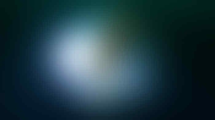 Niat Lihat Kapal Sisa PD II, Dua Penyelam Ini Menemukan Kantung Telur Cumi Raksasa