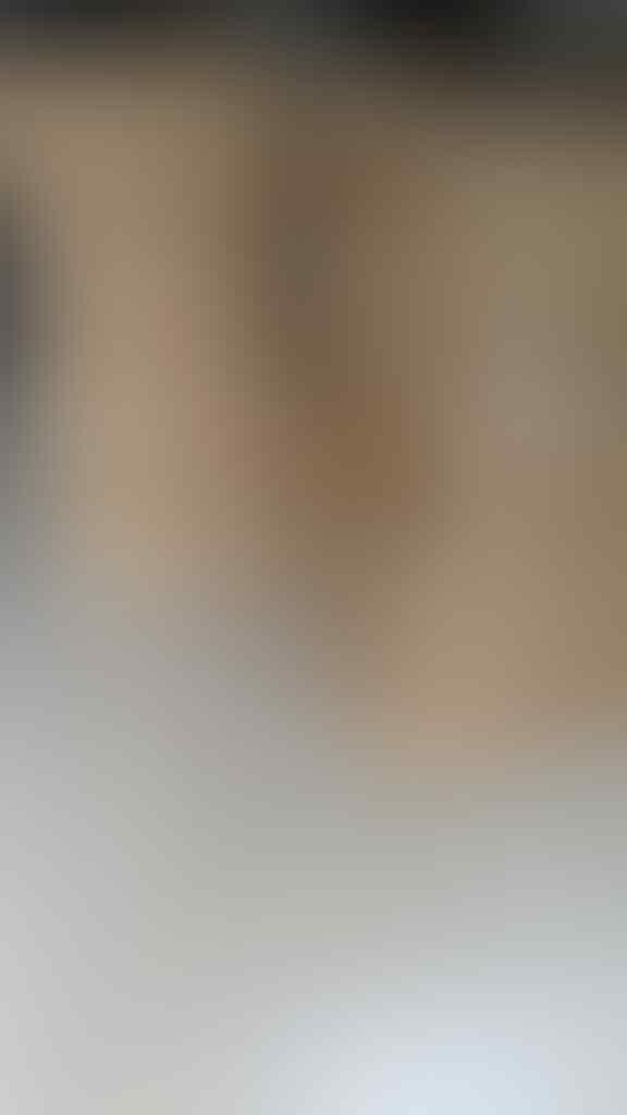 WorldToIndonesia | Samsung Galaxy Tab 2 P3100 Free 2 Leather Case