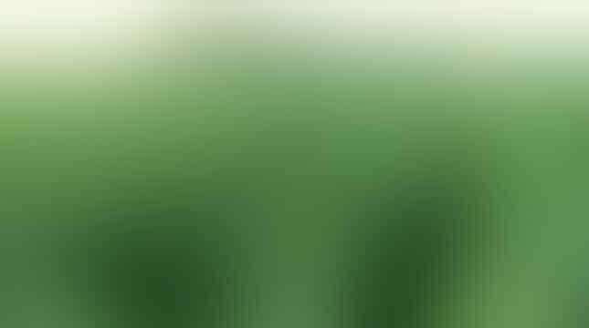 Genus Nicotiana asal Temanggung