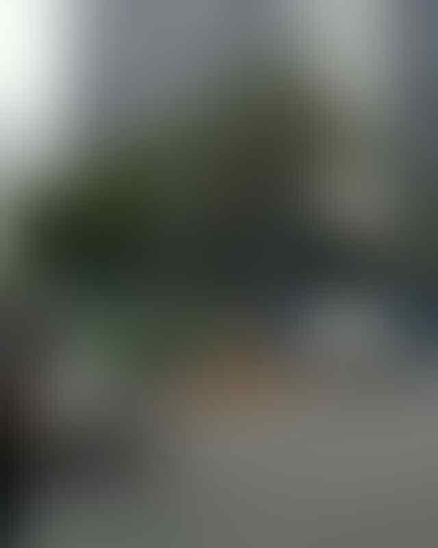 Miris, Bus Transjakarta Disuruh Mundur oleh Pemotor yang Lawan Arus