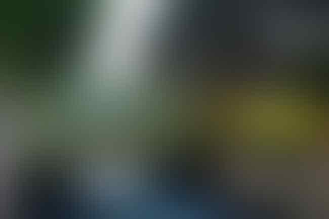 Usai Ketupat dan Krendang, Anies Pamerkan Jembatan Kerang Hijau di Koja