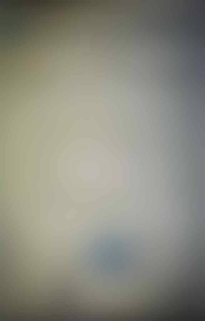 Setelah Ahok Diangkat Arie Gumilar Malah Tandatangani Surat Dukungan Ini