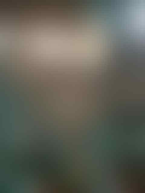 Komentari Acara Reuni 212, Gun Romli: Monas Sepi Kosong Melompong