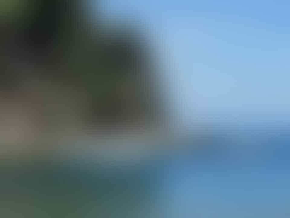 Taman Laut Olele, Keindahan yang Tersembunyi, Anda Sudah Tahu?