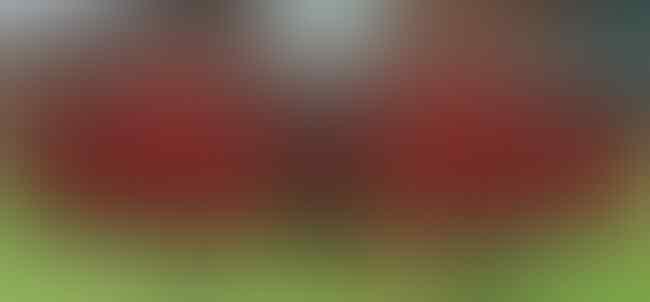 Hattrick Gagal Juara, Masak Liverpool Mau Quattrick?