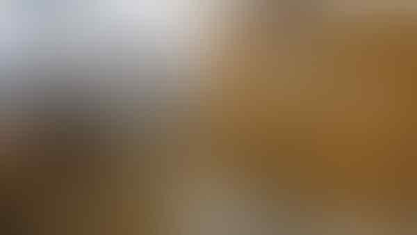 Ini Kronologi Insiden 'Penahanan' Penumpang Garuda Indonesia