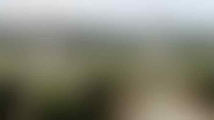 Cawagub DKI dari PKS: Revitalisasi Monas untuk Ruang Terbuka Hijau