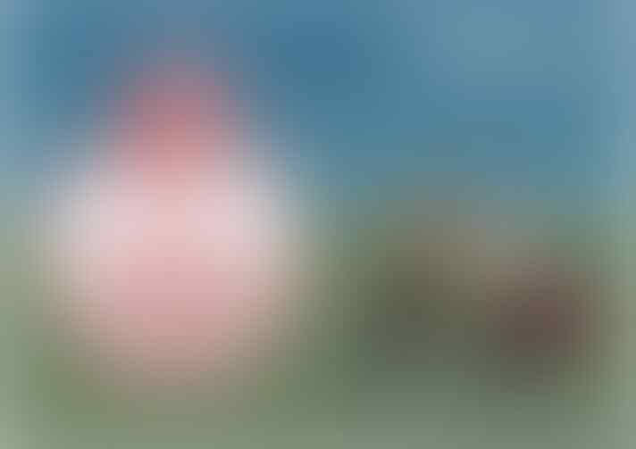 Kenalan yuk dengan 5 Kartunis Sepakbola Terkenal ini, ada yg dari Indonesia gan