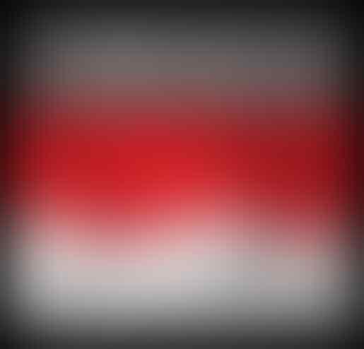Tolong Pak Jokowi Embargolah Indonesia