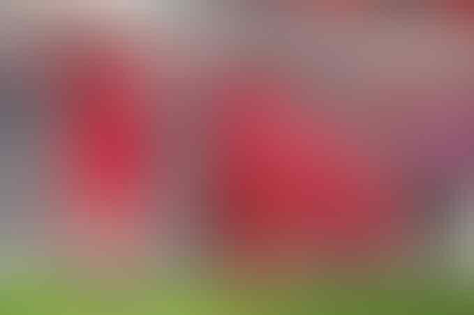 4 Klub Yang Pernah Dilarang Tampil Di Level Eropa, Liverpool Juga Pernah Gan