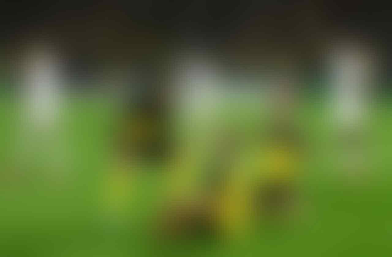 Erling Haaland Ngegas Banget di 16 Besar Liga Champions
