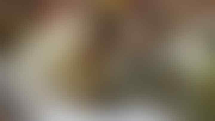 Muhadjir Effendy Usulkan Fatwa Orang Kaya Nikahi Orang Miskin