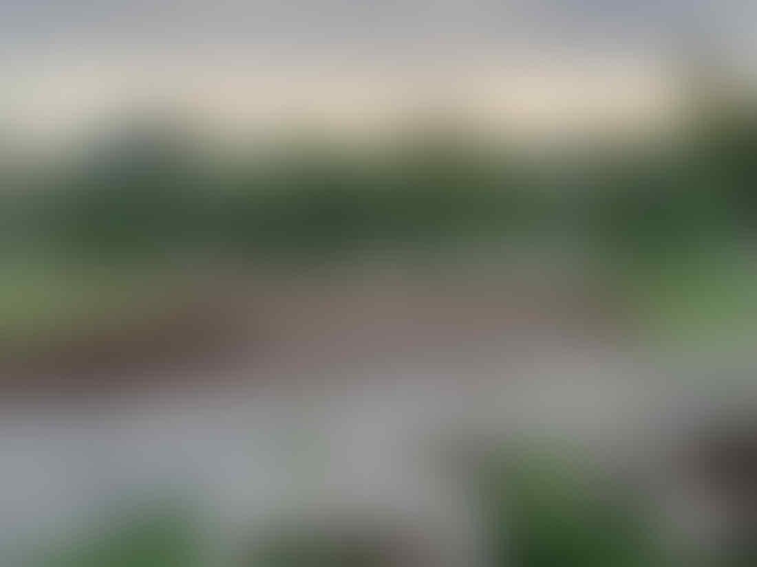 Foto terbaru proyek sirkuit Motogp Mandalika, kok masih gini ya ?