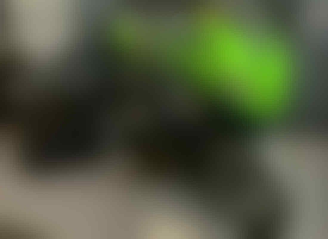 Ternyata Harga NJKB Kawasaki ZX25R Cuma 60 Jutaan, Kok Murah?
