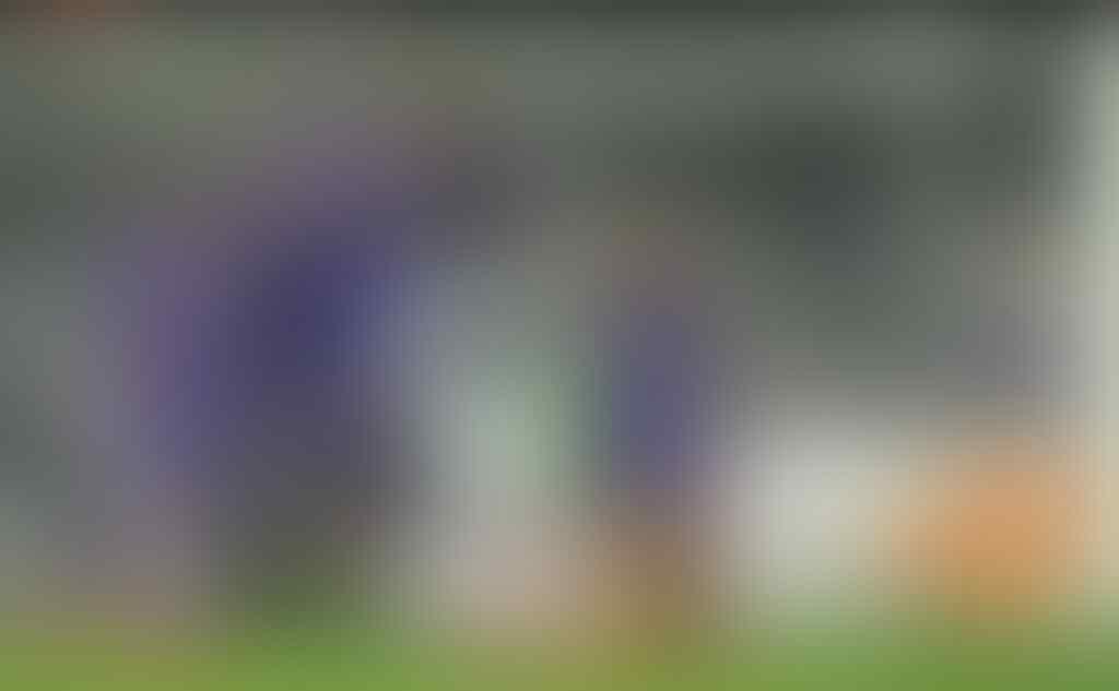 Mengulik Kejeniusan Didikan Inter, Bergkamp dan Pirlo