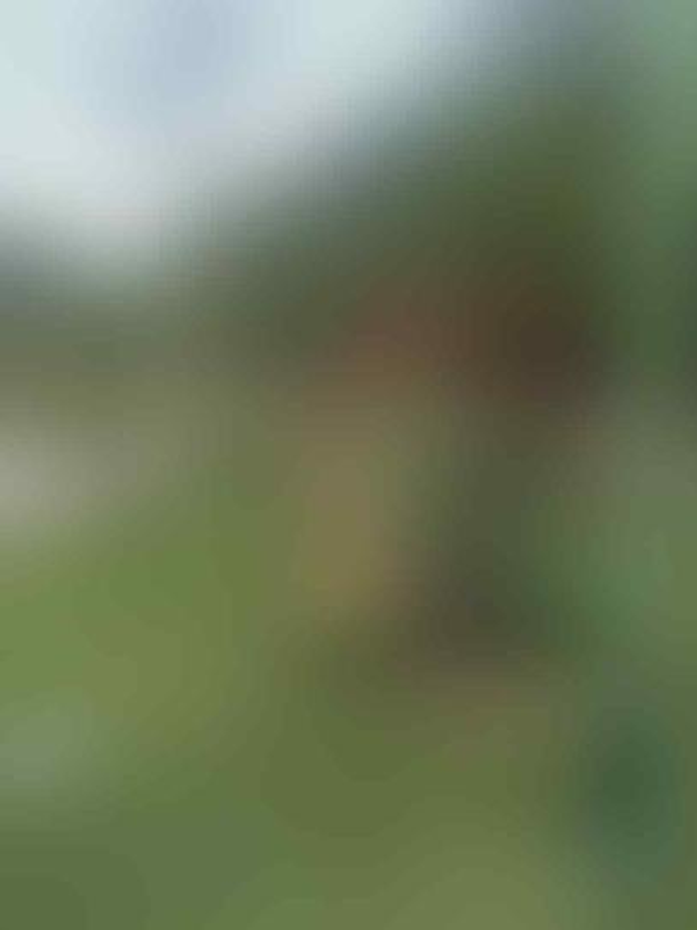 [COC Regional: Lokasi Wisata] Destinasi Taman Candi Kali Mati Ngawi yang Eksotik