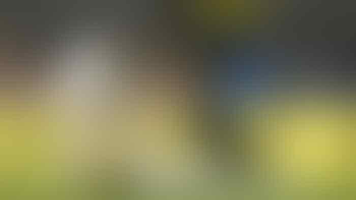 Maen Futsal Malam Pake Rumput Sintetis, Kelar Hidup Ente (benarkah?)