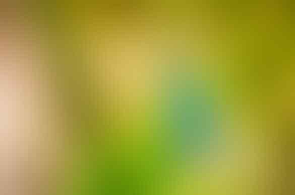 Segar dan Berkhasiat Lemon Jahe ala Ina Sendry. Wajib Dicoba Gan!