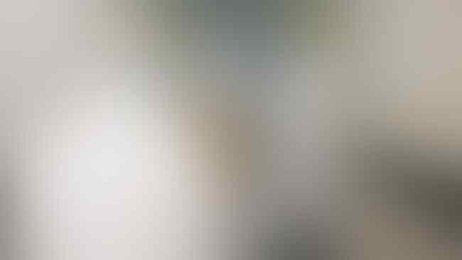 Konkret, Ketika Prabowo Langsung Telpon Bos-bos Pabrik