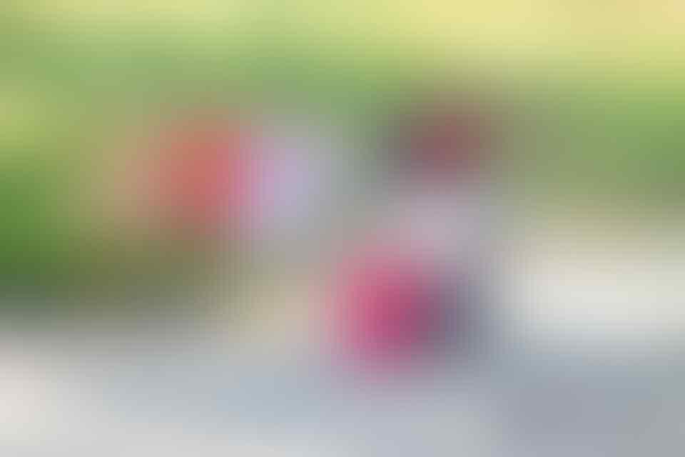 12 GAMBAR LUCU DIJAMIN NGAKAK | Sejenak Melupakan Corona.