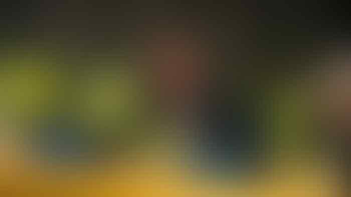 Ponsel Fadli Zon Diserang, Diteror dengan Nomor Tidak Dikenal Asal Luar Negeri