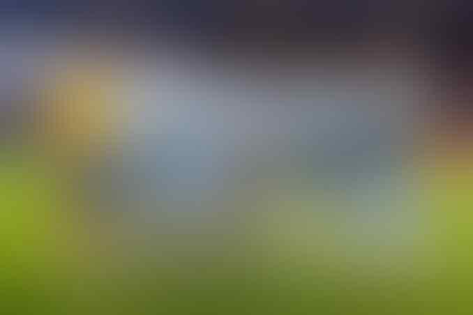 Mengingat Satu Momen Dramatis Perebutan Gelar Scudetto Dan Premier League