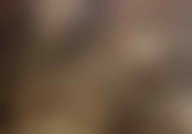 Sejarah Digelapkan! Bung Karno Penemu Makam Imam Bukhari. Kaitan dengan Bucek Depp?