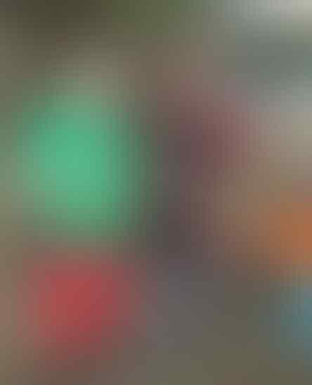 6 Cara Merawat Burung Murai Batu Jelang Lomba, Semoga Gacor!