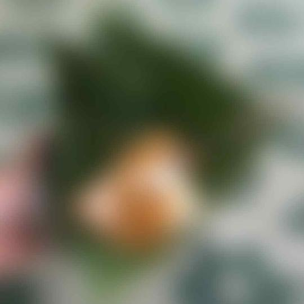 Agan & Sista Berencana Mudik Eh Pulang Kampung Ke Solo? Wajib Coba Nasi Liwet Ini