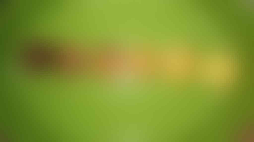 """8 Foto Kue Kering """"Dark Mode"""", Bikin Ngakak Abis"""