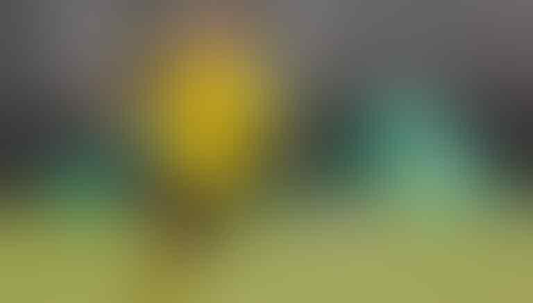 Rating Seluruh Pemain Dortmund saat Melawan Bayern Muenchen Selasa 26 Mei 2020