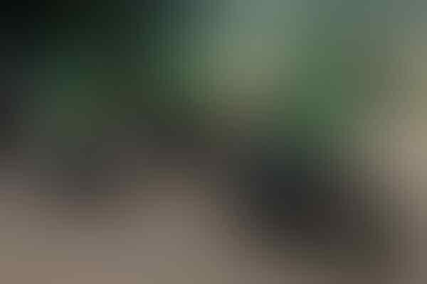Gojek Mulai Gunakan Sekat Pelindung Untuk Layanan GoRide