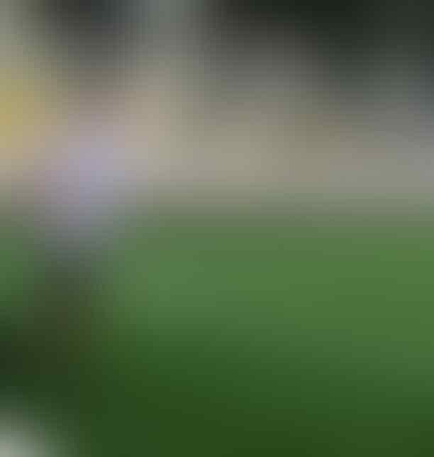 Sambut Pembukaan Lanjutan Liga Federasi, PSIS Bagi Tugas Tim Manajemennya