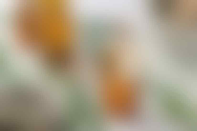 Kalung Anti Virus Corona yang Siap Diproduksi Ternyata Mengandung Eucalyptus Oil