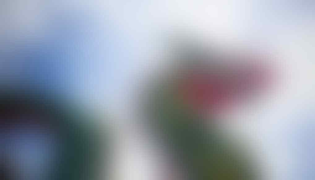 Warga Cina Geger Kemunculan Suara Naga Di Bukit Jagung, Bukti Video Tersebar Luas