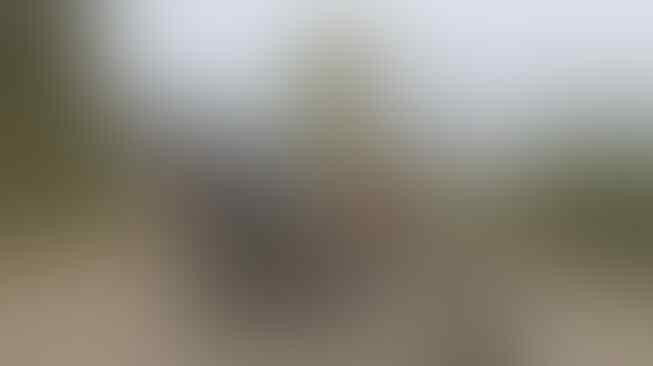 Deretan Potret Nyeleneh Ojol di Negara Afrika, Kostumnya Bikin Tepok Jidat