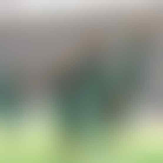 Liga 1 & 2 Akan Tayang Lagi? Saatnya Menikmati Seni & Sportivitas Tim Andalan. Seru!