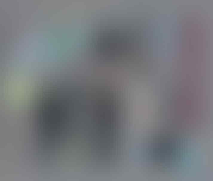 Polisi di Belanda Diwajibkan Membawa Boneka, Indonesia Wajib Bawa Apa?Form Tilangan?